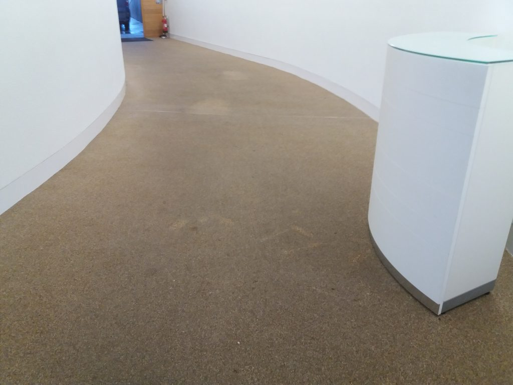 commercial sureset flooring cleaning oxford
